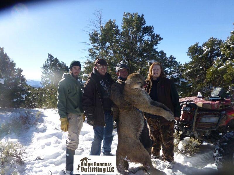 Premier colorado mountain lion hunts for Colorado fishing license age